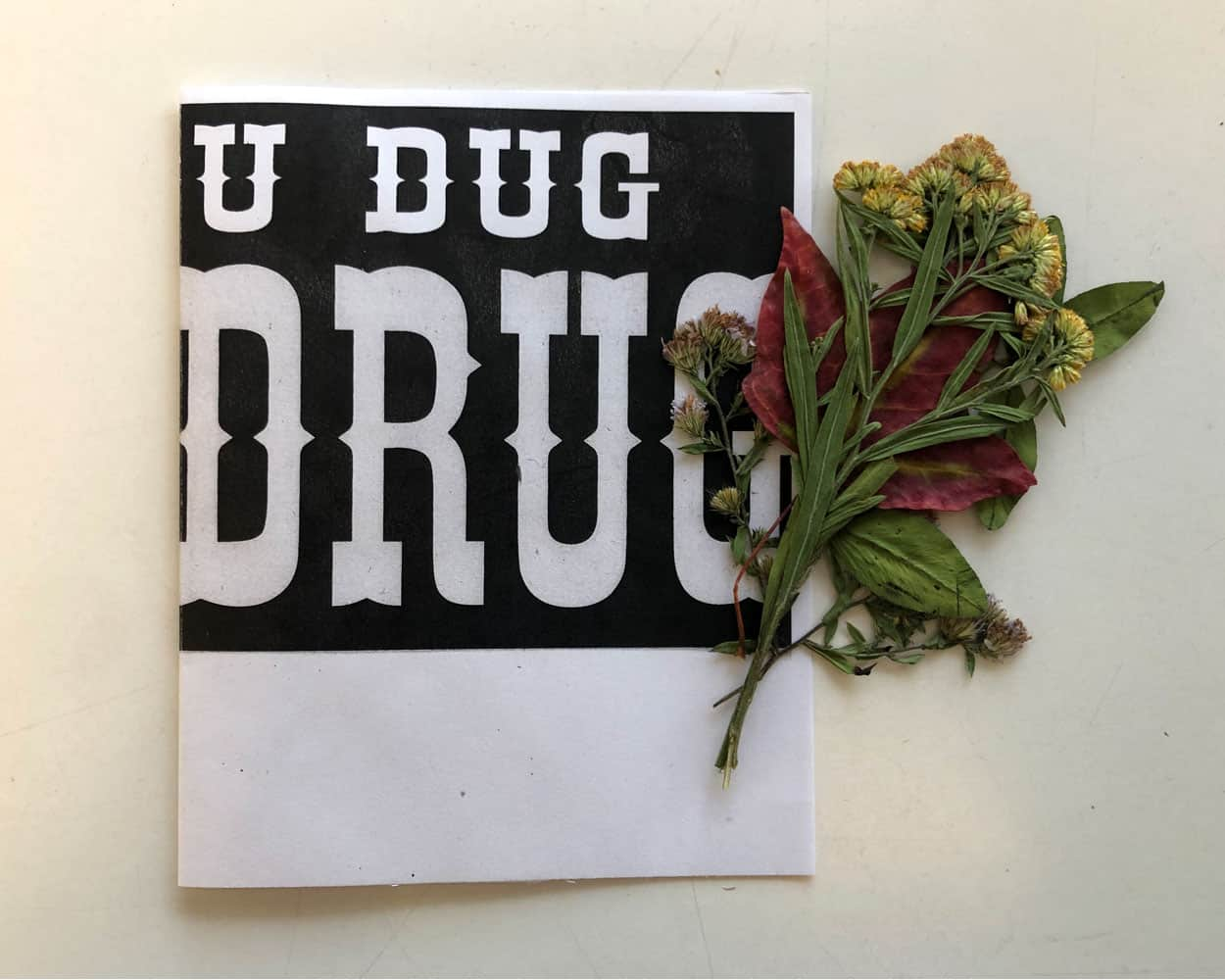 a folded piece of paper with the letters dug written acorss the top and drug in larger letters across the bottom. Pressed flowers sit on the side.