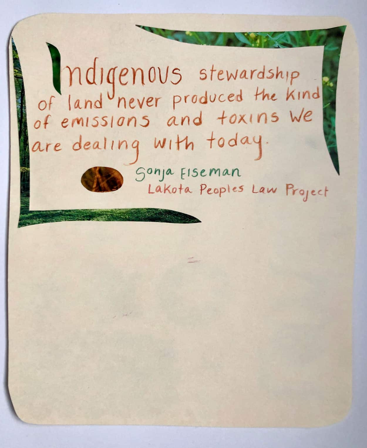 "Political postcard with the words: ""Indigenous stewardship of land never produced the kind of emissions and toxins we are dealing with today"" - Sonja Elseman, Lakota Peoples Law Project. Surrounds by collaged grass cut outs"