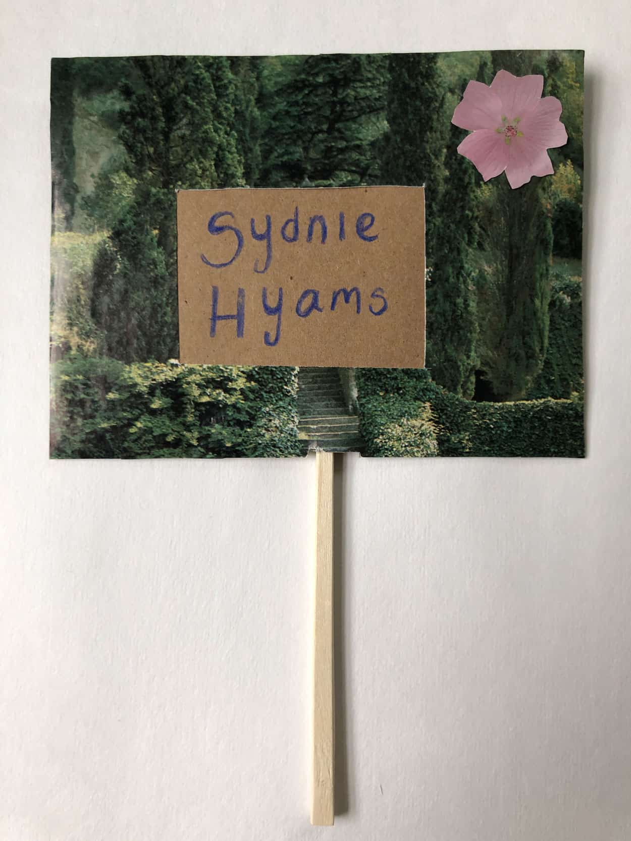 "and image of Hdeges and a stair case is covered by a brown cutout with the name ""Sydnie Hyams"" written on it. There is a pink flower in the top right corner"